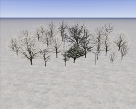 270px-KRSTool_MyTrees_04Winterl.jpg